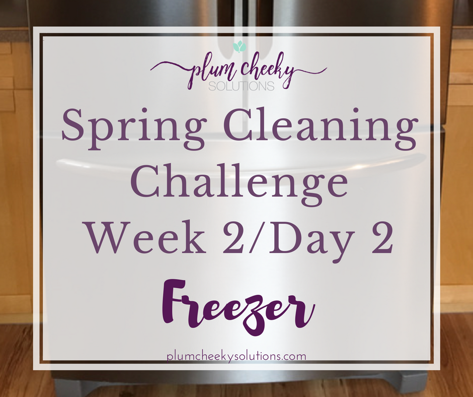 Spring Cleaning ChallengeWeek 2 Day 2.png