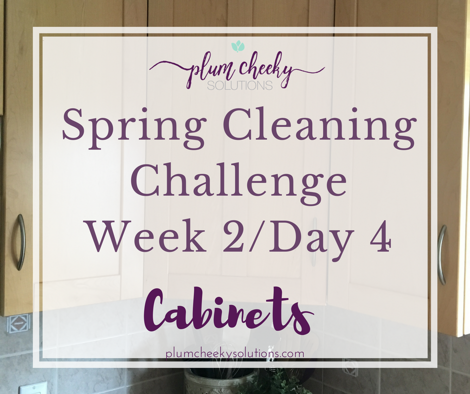 Spring Cleaning ChallengeWeek 2-Day 4.png