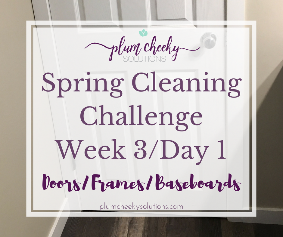 Spring CleaningChallengeWeek 3 Day 1.png