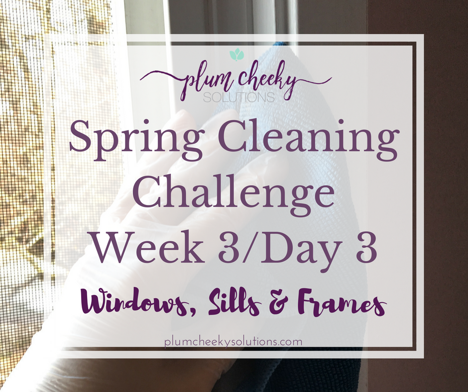 Spring Cleaning Windows and Windowsills