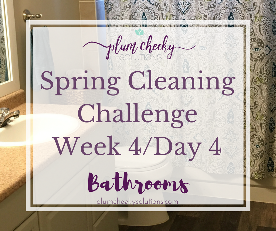 spring cleaning the bathroom