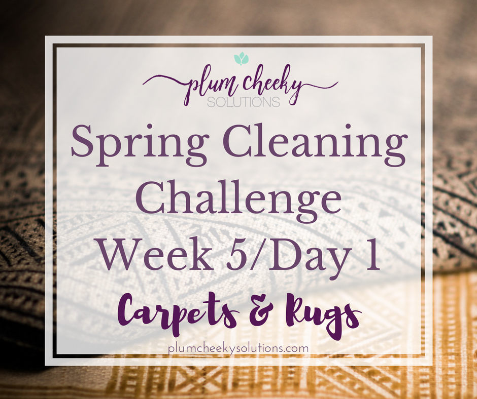 Spring Cleaning Washing Carpets