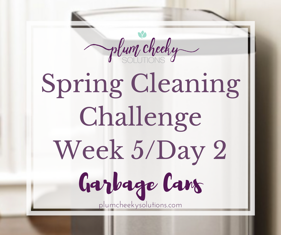 spring cleaning garbage cans