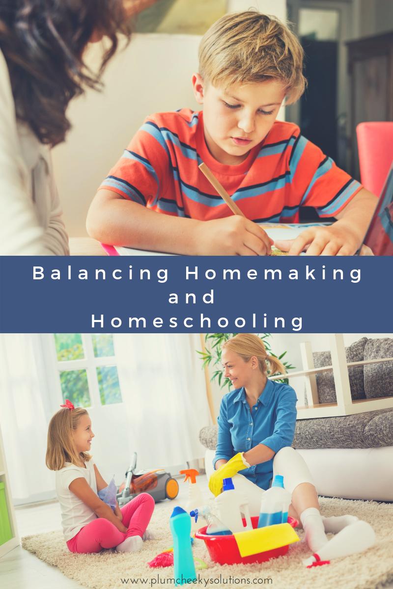 homeschooling and housework