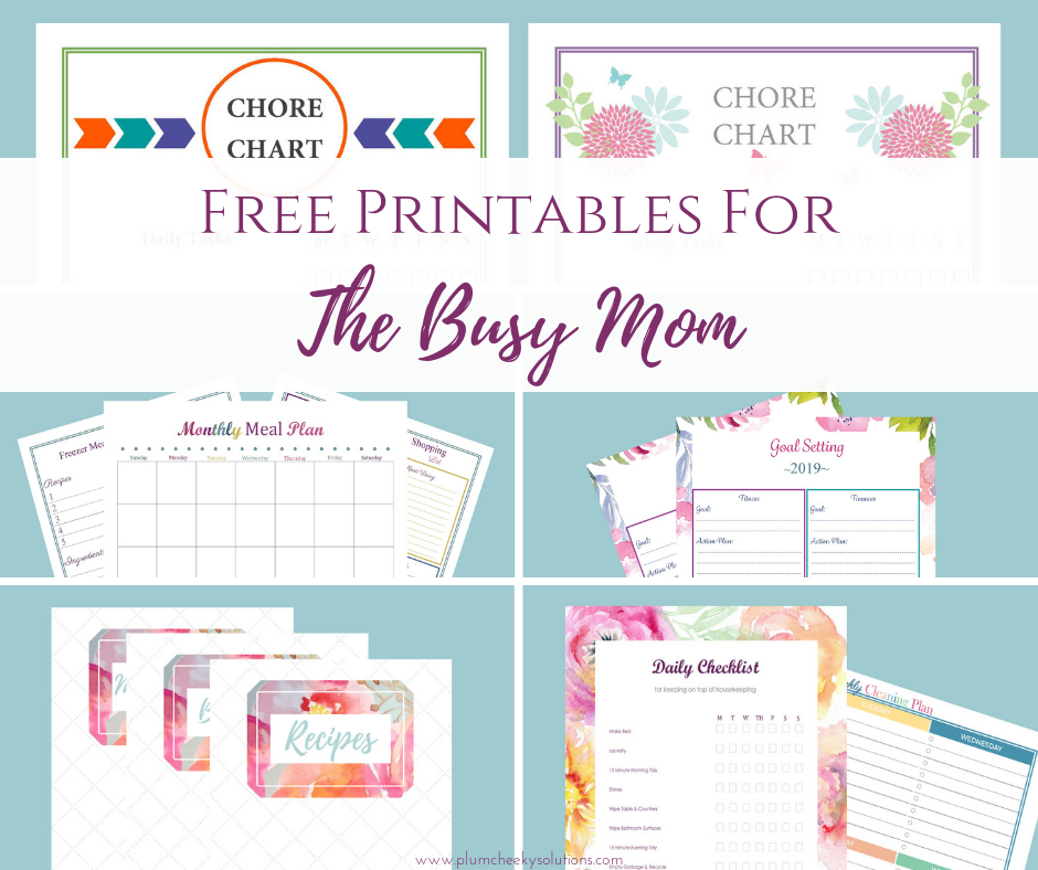 picture about Mom Printables known as Free of charge Homemaking Printables For The Occupied Mother Plum Cheeky