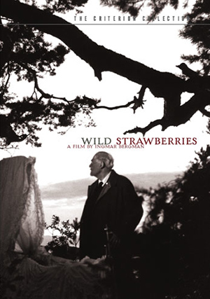 wild-strawberries.jpg