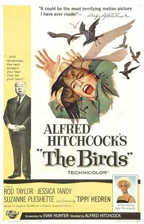 The_Birds_08.jpg