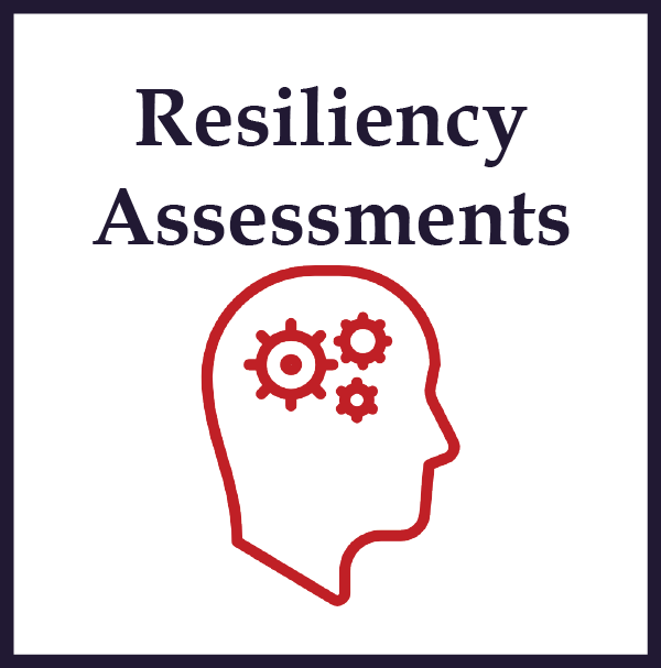Resiliency Assessments website button.png