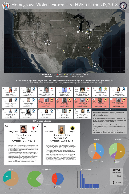 HVEs in the US 2018.jpg