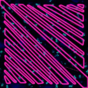 Copy of Copy of Pink Brink