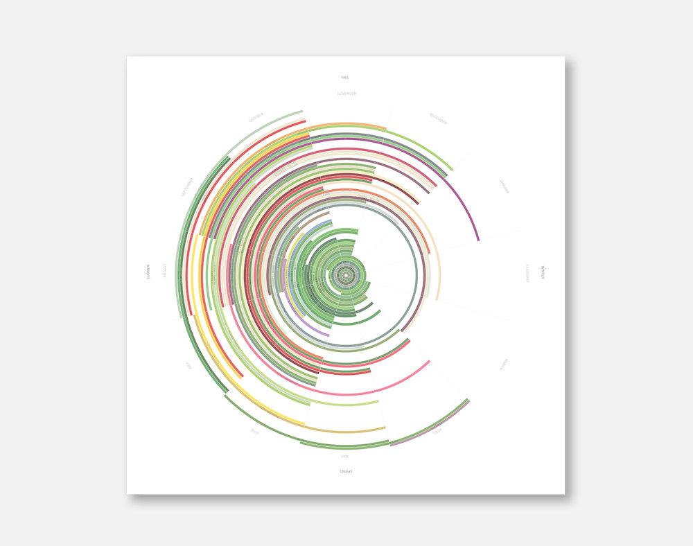 Seasonal Vegetable Chart -