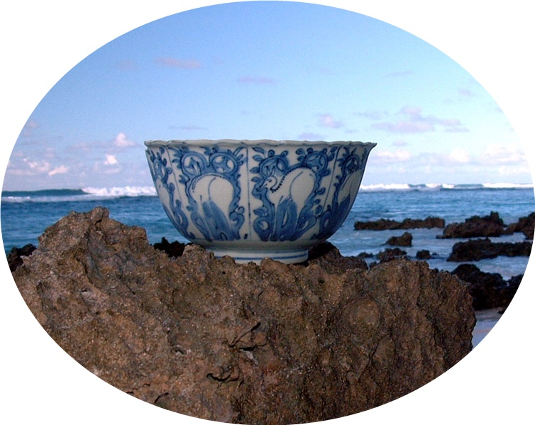 Chinese soup bowl, at wreck site