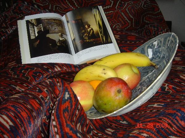 vermeer book.jpg