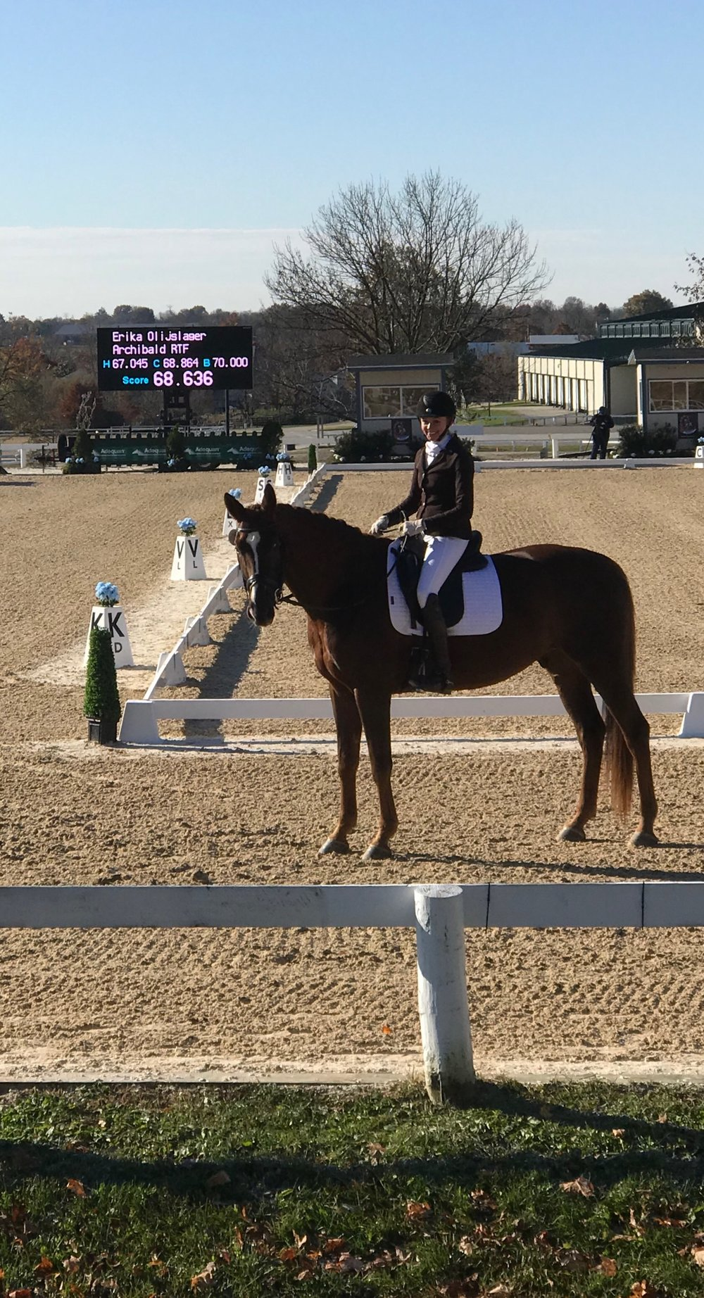Erika Olijslager & Archibald RTF   6th in the AA Training Level Championship