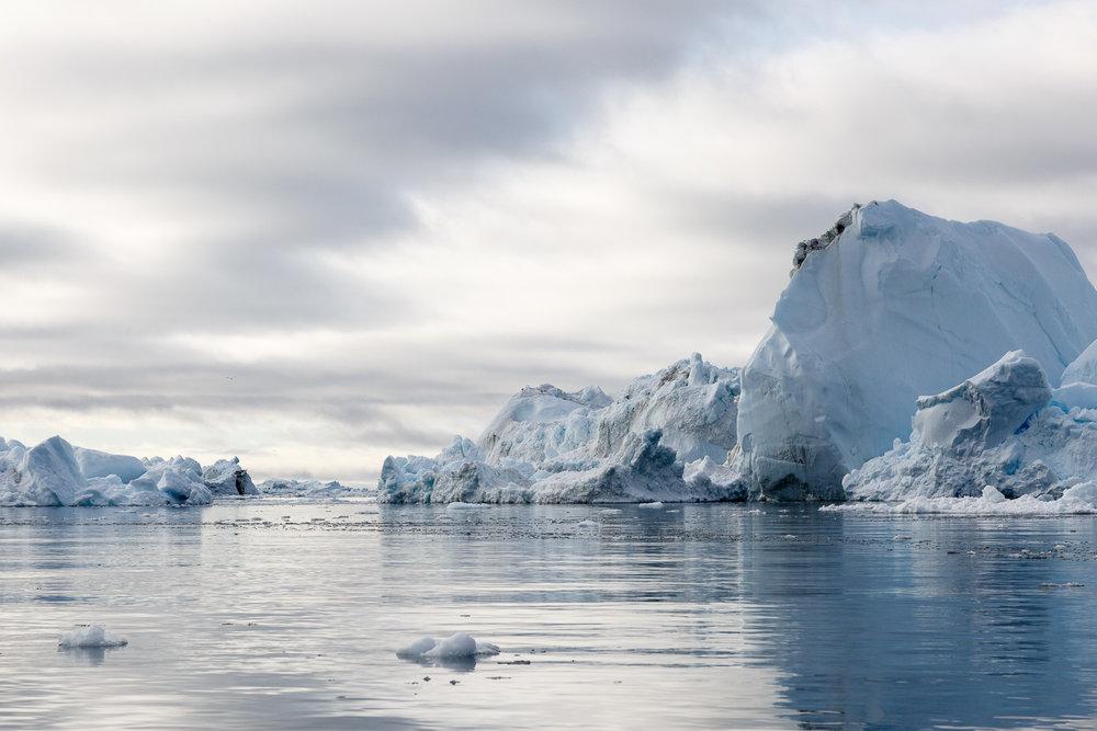 Icebergs in Davis Strait