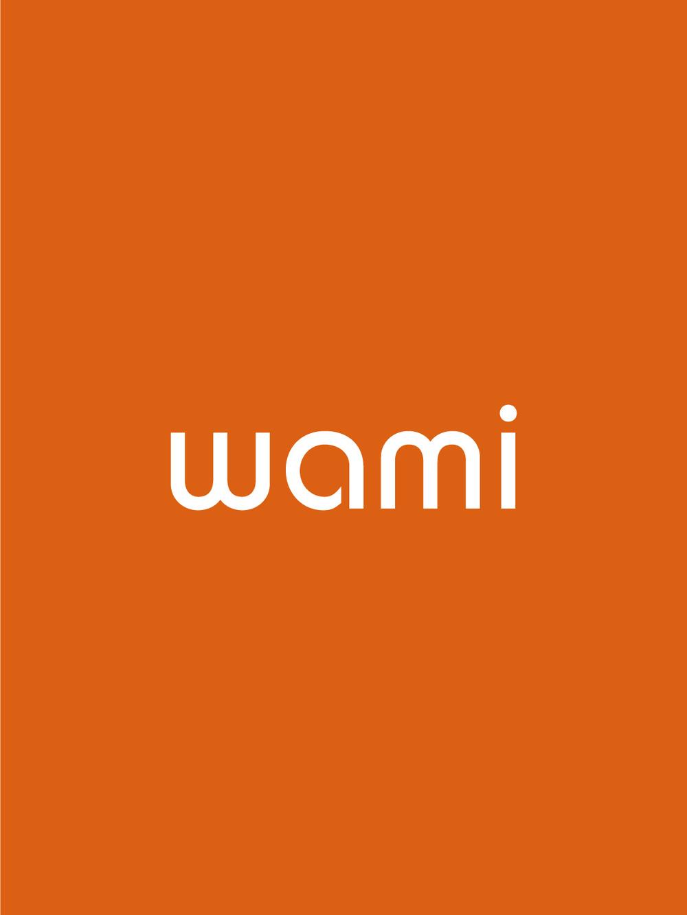 WAMI_TN_4of4.jpg