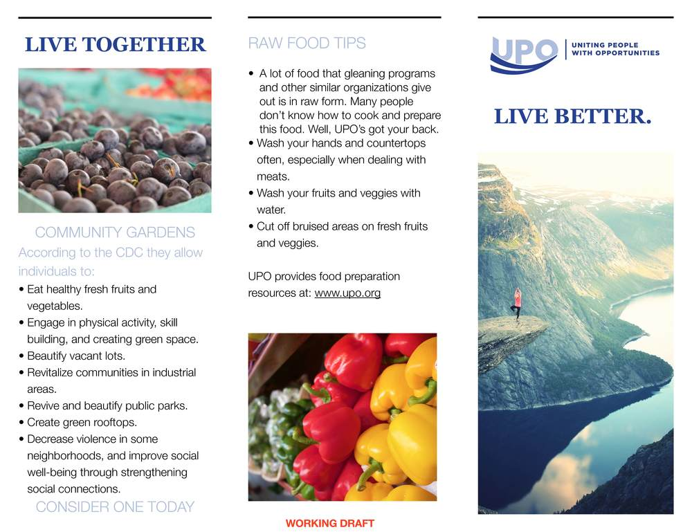 Healthy Living Brochure UPO_Page_1.jpg