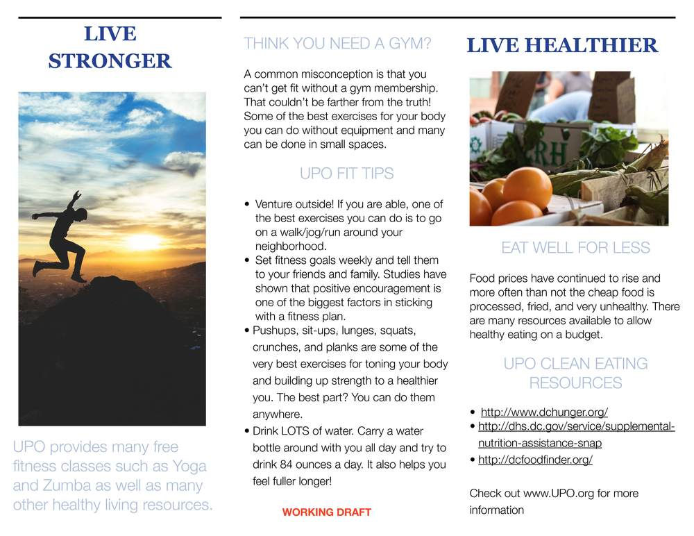 The above images are the draft formatting for a Healthy Living brochure that will be sent home with kids in their backpacks at the start of school to encourage healthy eating and fitness.
