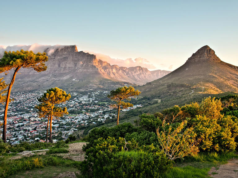 TheKnot Cape Town South Africa Nature View.jpg