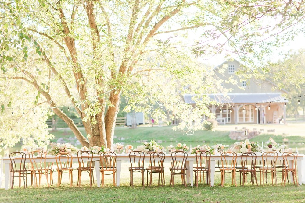 Outdoor Wedding Reception at Big Spring Farm.jpg
