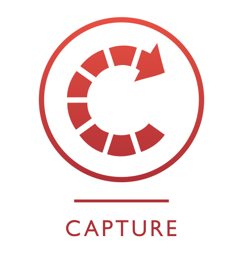 Capture Icon
