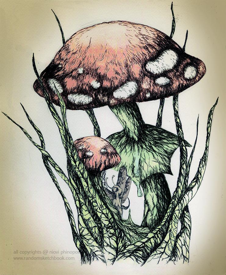 shisha mushroom.jpg