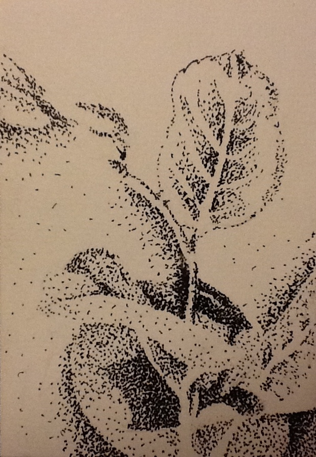 How To Tell The Difference Between Pointillism Stippling Dot Art