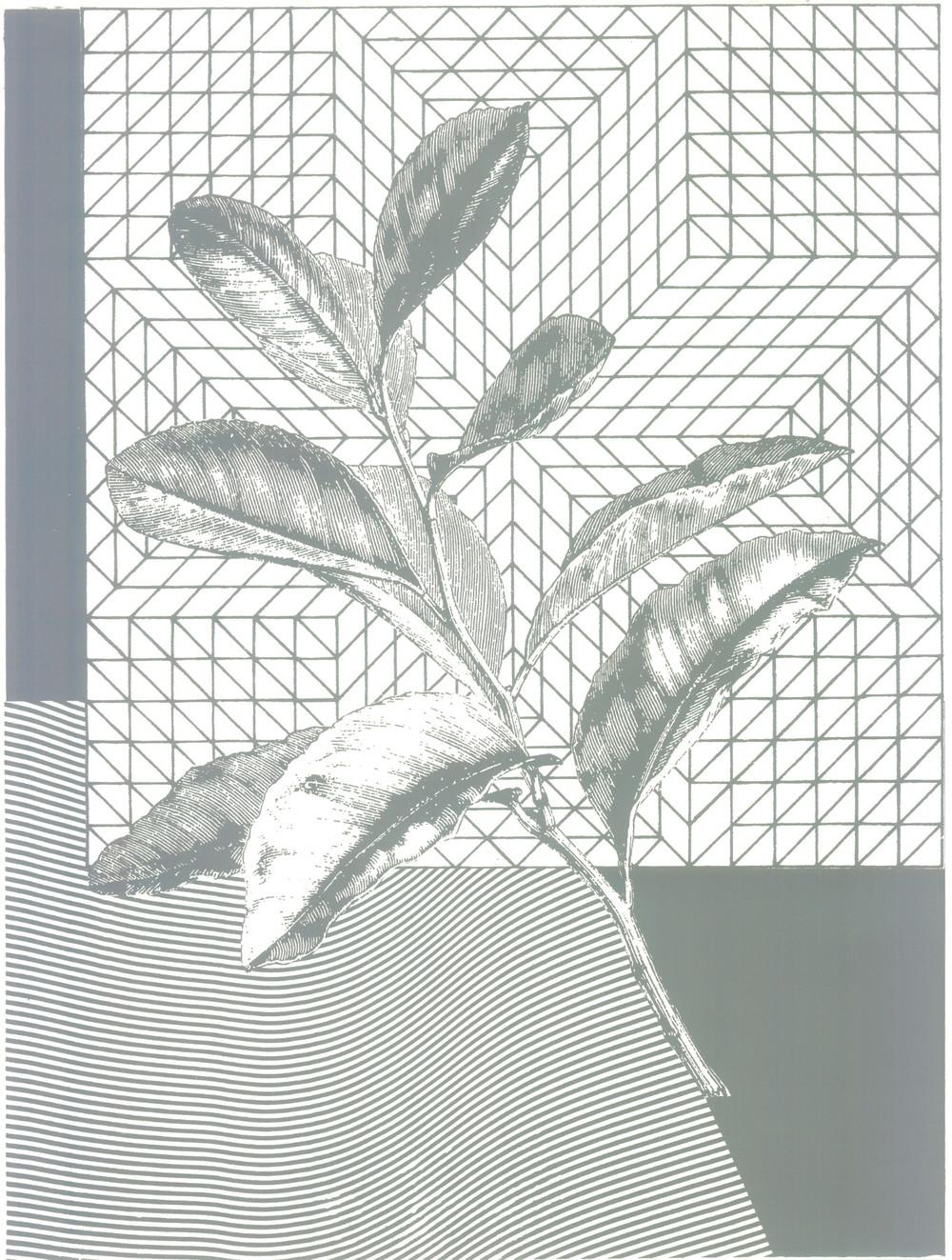 "Spring Equinox  Screenprint  18"" x 24""  2015"