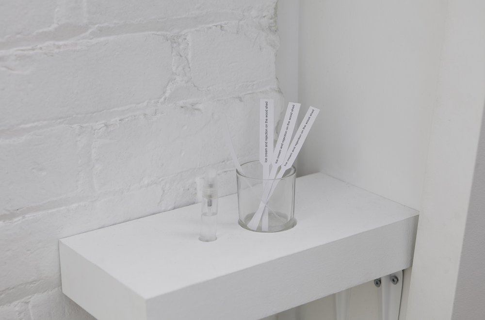 "In the same breath, installation shot of scent and tester strips  Collaboration with Joële Walinga September 7 - October 13, 2018 Gallery 44, Toronto  This exhibition investigates the transference of memory from one living thing to another. ""In the same breath"" documents Nauta and Walinga speaking their most intimate memories to plants, capturing these interactions in a series of silent videos and cyanotype prints. Exploring the possibility that plants can retain memory and hold emotions, cuttings from these plants are distilled, creating scents to accompany the works and offering intimate possibilities for engaging the natural world.   gallery44.org/exhibitions/same-breath"