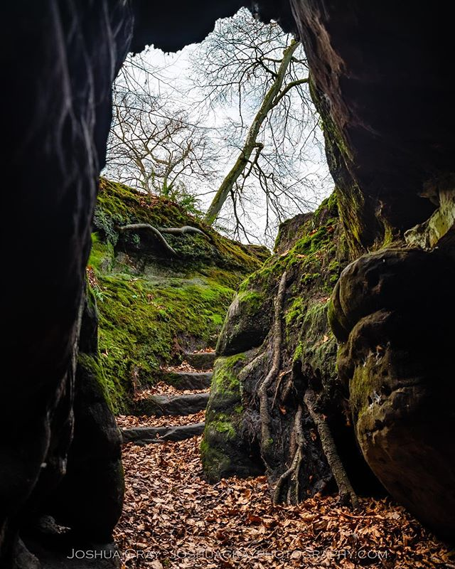 Some unusually rocky terrain for the South Downs. Lake Wood, near Uckfield. . . . . #southdowns #uk_photooftheday #naturephotography #ukphoto #photography #nature #landscape #landscapephotography #ig_sussex #cave #lakewood #uckfield #uk_shots #ukpotd #photooftheday #instagood #eastsussex #explore_britain #nikon #woodland #sussexcounty #getoutside #travel #uk_shotz #1x #earthcapture #caving