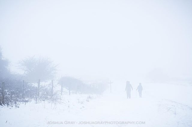 Eerie conditions up on the hills this week. . . . . #southdowns #uk_photooftheday #photography #nature #snow #landscape #landscapephotography #naturephotography #photooftheday #weather #ig_sussex #ukpotd #uk_shots #eastsussex #ditchlingbeacon #england #instagood #winter #snowday #naturelovers #brighton #brighton_clicks #lovebrighton #thisisbrighton #earthcapture #getoutside