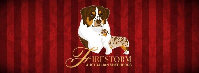 Firestorm Logo white (2).jpg