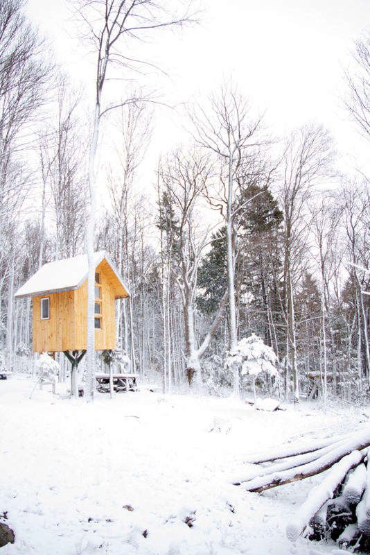 Tree House Studio built for a client in Vermont