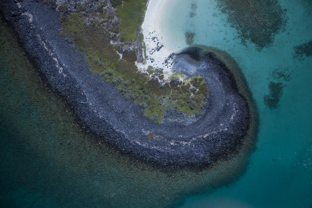 MDCKA-Isla Coronado-1188.JPG