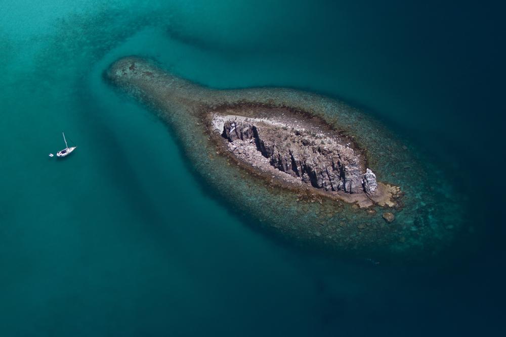 MDCKA-Isla del Espiritu Santo-0425.JPG