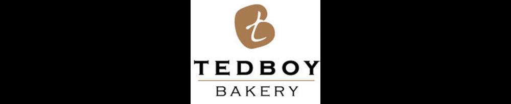 web_tedboy.png