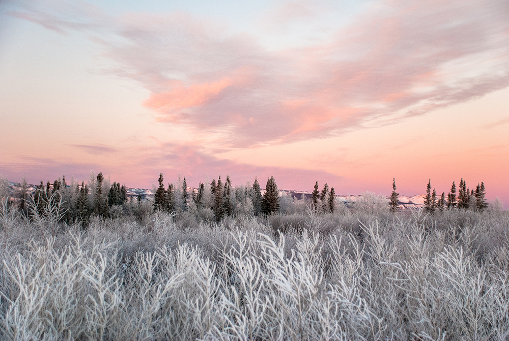 Sunset over frost in the North West Territories in Canada.