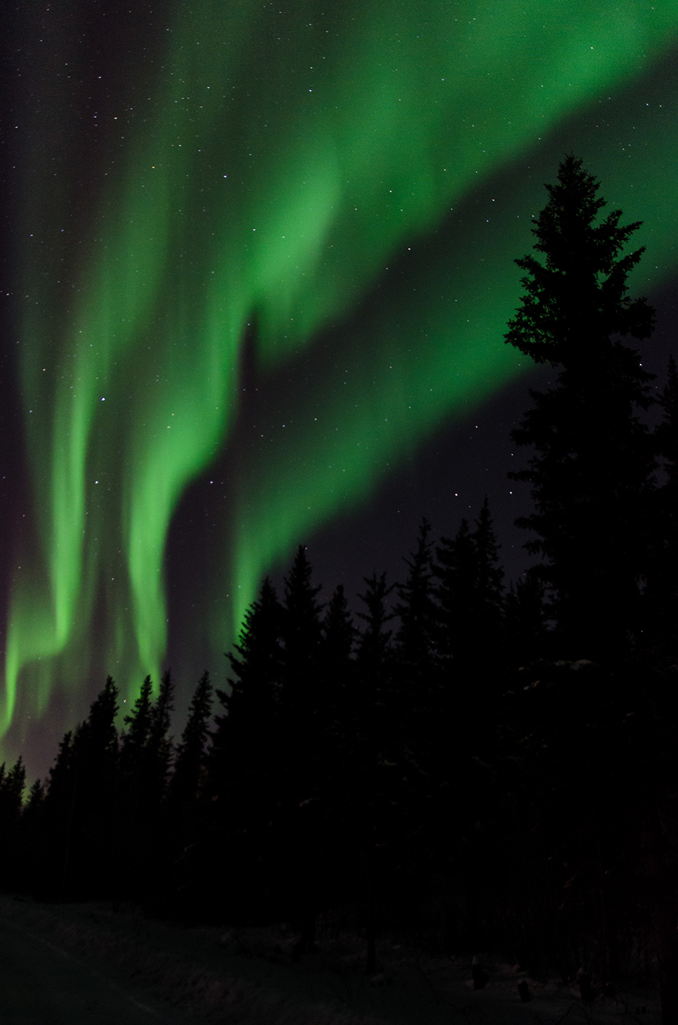 Northern Lights, Northwest Territories, Canada