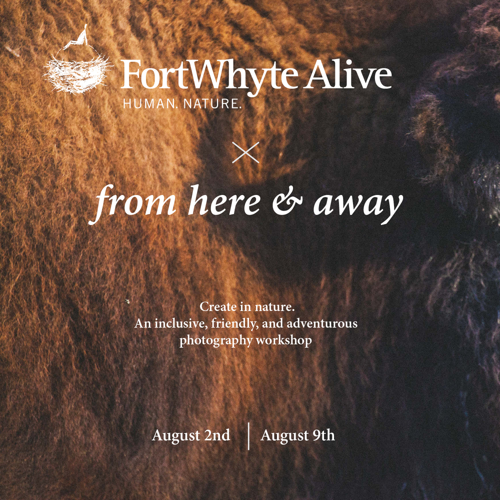 From Here & Away at FortWhyte Alive. Photography workshop collaboration. Led by Joseph Visser.