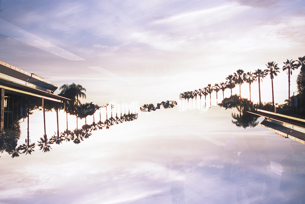 From Here And Away Kahren Sabater Palm Tree double exposure
