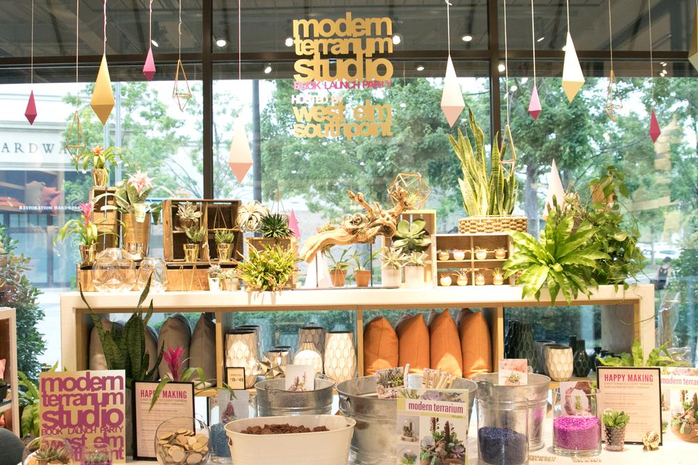 modernterrarium0117.jpg
