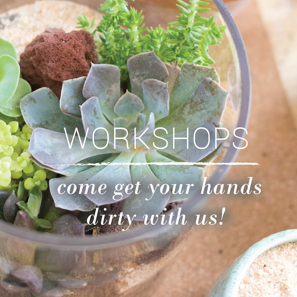 our-workshops