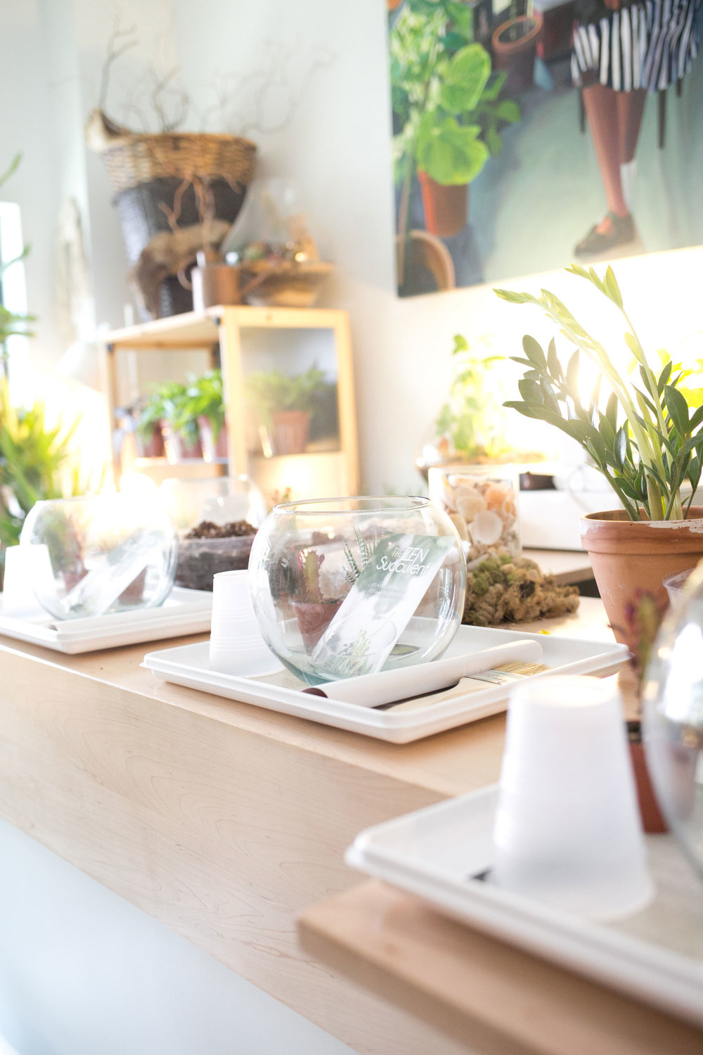 DIY-Terrarium-Bar-Glassware.jpg