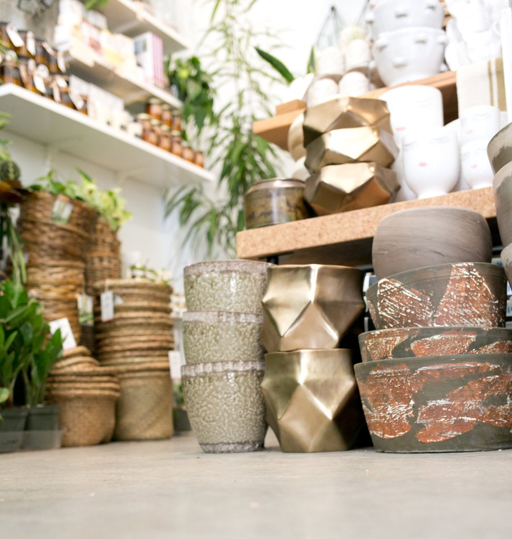 We offer a wide variety of pots and containers, perfect for indoor and outdoor use.