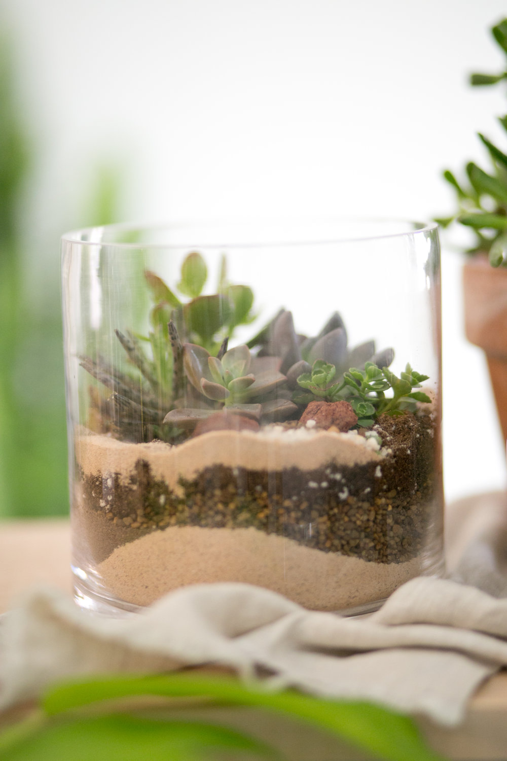 Layering with different types of media, such as soil, sand and rock, help keep your succulents from sitting in water, even in a pot or vase without holes.