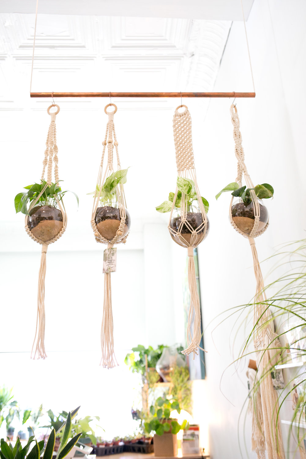 In addition to plants, we offer a wide variety of plant hangers made of different materials and in various sizes.