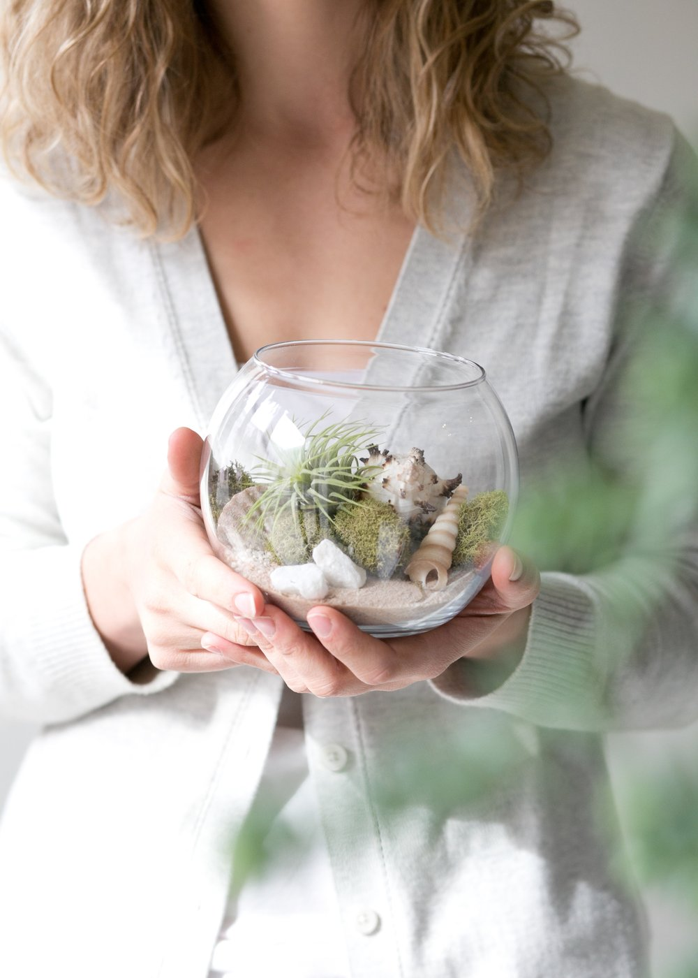 The_Zen_Succulent_Air_Plant_Terrarium.jpg