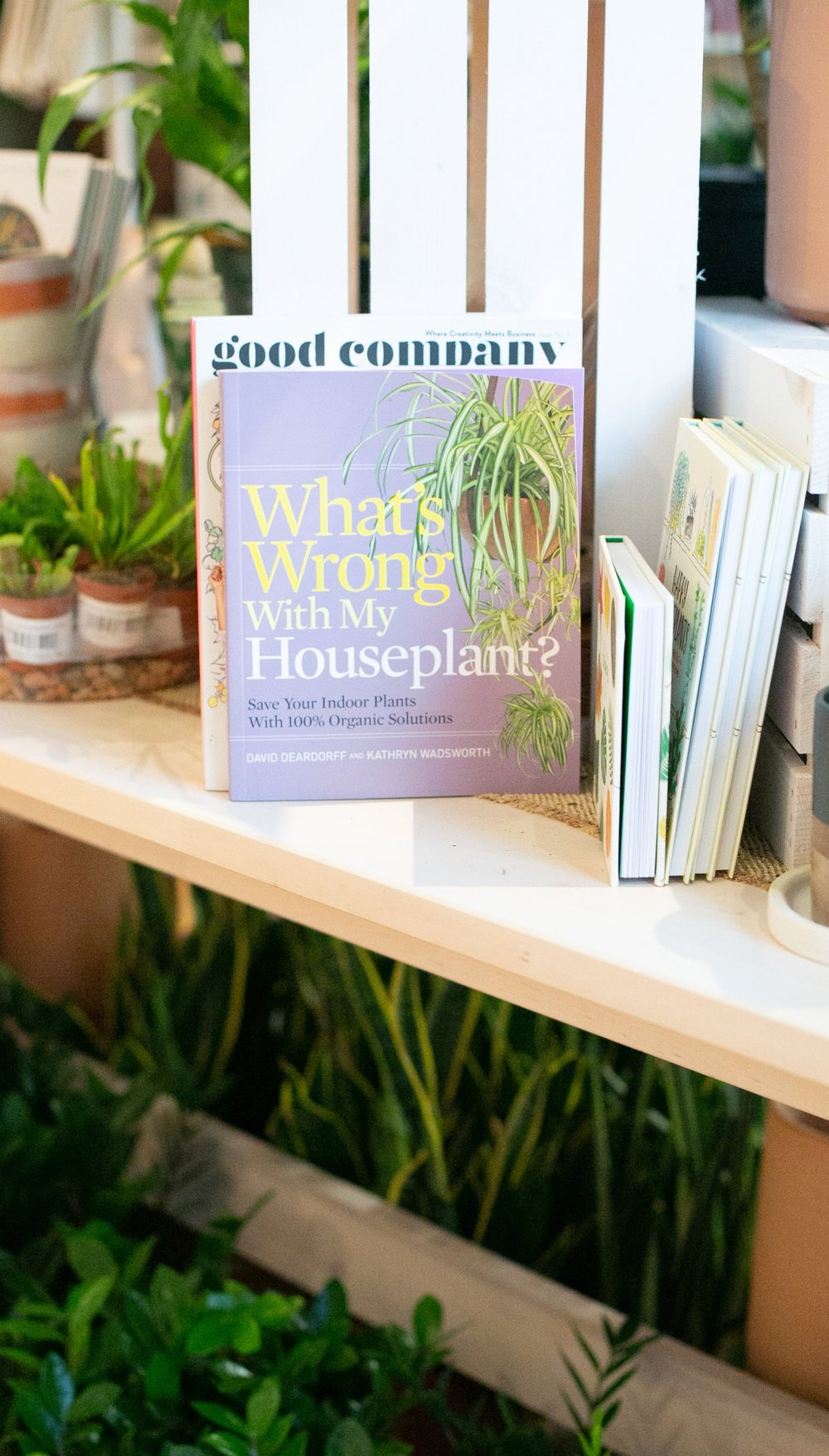 What's Wrong With My Houseplant?  is a favorite guide among our team for learning about plant problems and how to fix them.
