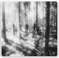 Woods1-2-e1427481732638.jpg