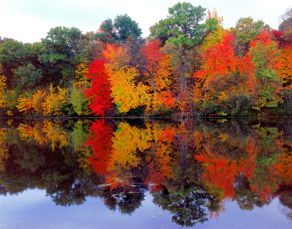 Fall colors on the banks of Mirror Lake, WI